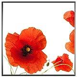 motivX-Ideenwerkstatt Magnettafel Quadrat incl. 100 STK. GRATIS Notizzettel - Motiv - AST mit roten Blüten