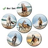 Kühlschrankmagnete Pferde Meer 6er Geschenk Set Pferdemotiv Magnete lustig für Magnettafel Kinder stark groß Ø 50 mm