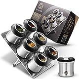 RAAVER® MagRack, das Original - magnetische Gewürzdosen - Lebensmittelecht aus 304 Edelstahl, mit BPA-freiem Streuaufsatz - 6 Gewürzstreuer und 1 Lagerplatte - Top Design